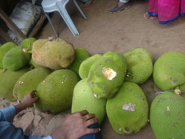 Several large jackfruits that I saw in a shop. They are quite big.